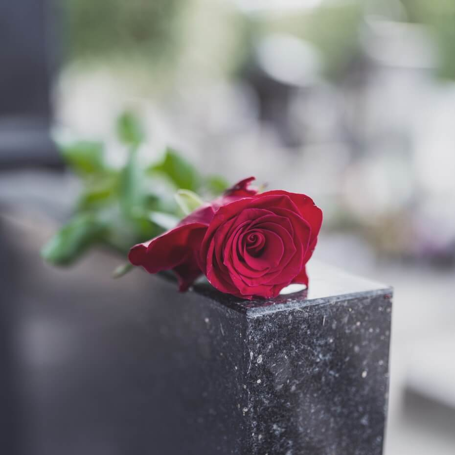A single rose on top of a headstone