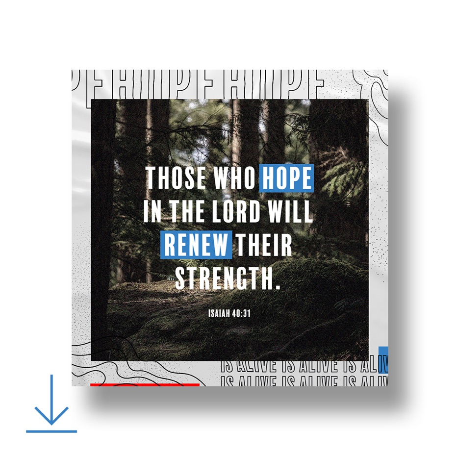 Those who hope in the Lord renew their strength